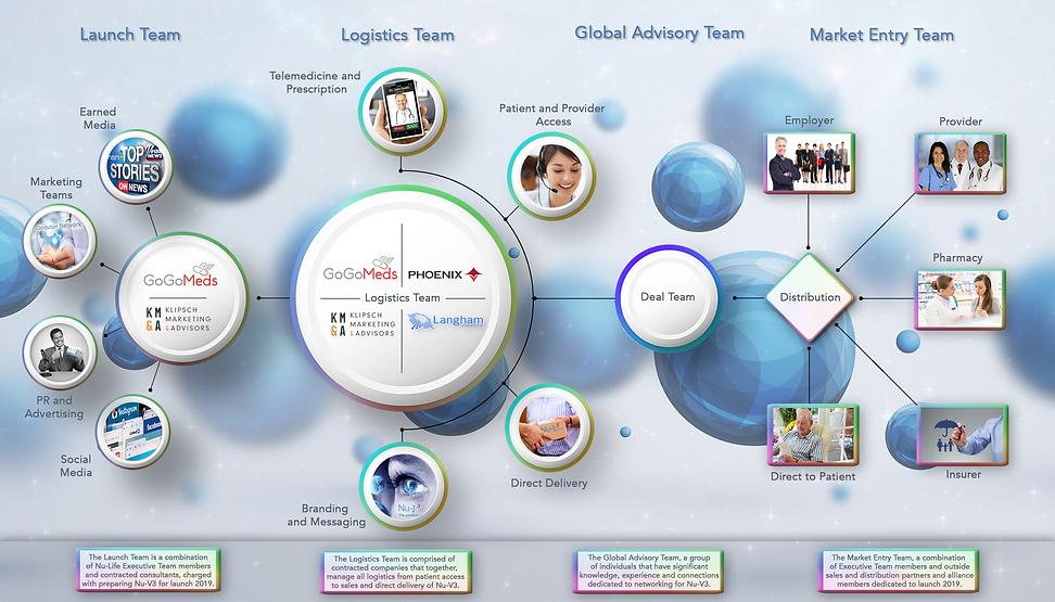 Teams & Roles Website - 2019 .png
