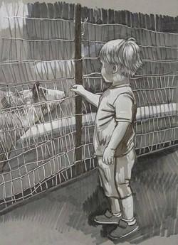 Little Boy at the Farm