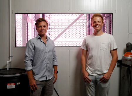 One Point One Founders discuss Willo, and their goal to meet the world's nutritional needs