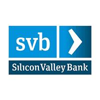 svb logo.png