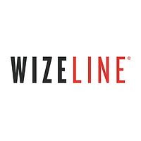 wizeline logo.png