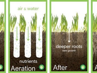 Aeration - The Secret Weapon for a Healthy Lawn