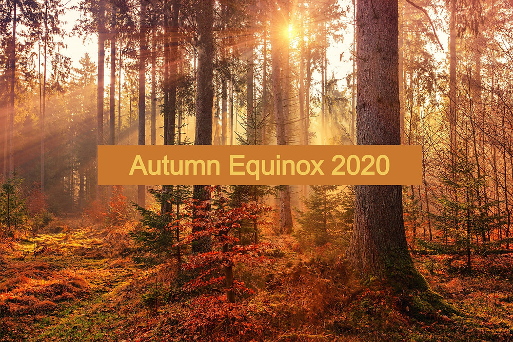 Autumn Equinox - Abby Drew - Intuitive Guide