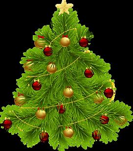 christmas-tree-png-31871.png