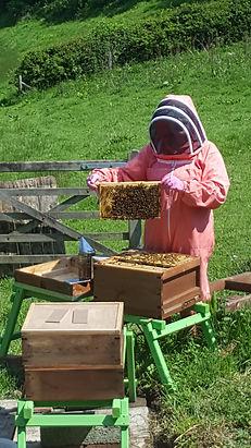 beekeepingmay20.jpg