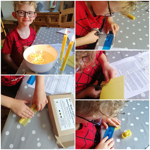"""""""Buzz Lights"""" Beeswax Candle Making Kit"""