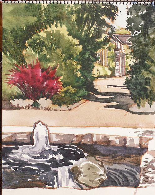 Olbrich pool