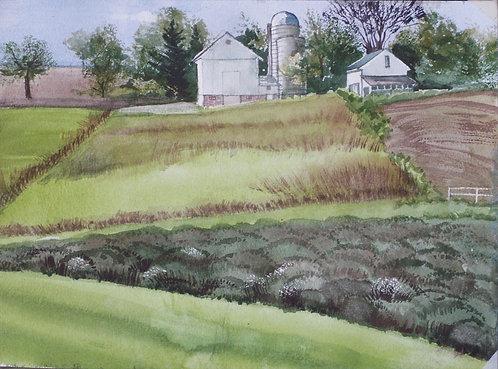 Pope Farm