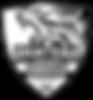 PANTERA SPORTS TORWARTSCHULE_07062019_II