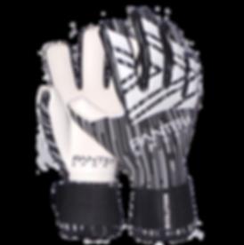 Pantera Sports Evolution_Cut.png