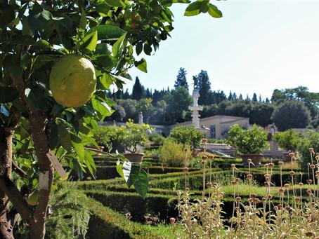 Un 'Ortaccio' tra le meraviglie del giardino di Castello