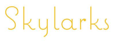 skylarks logo copy.jpg