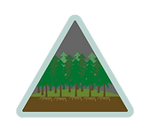 Woodland management logo Icon resized co