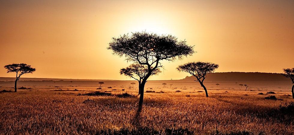 kenya-4119572_1920_edited.jpg
