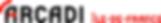 logo_arcadi_2013.png