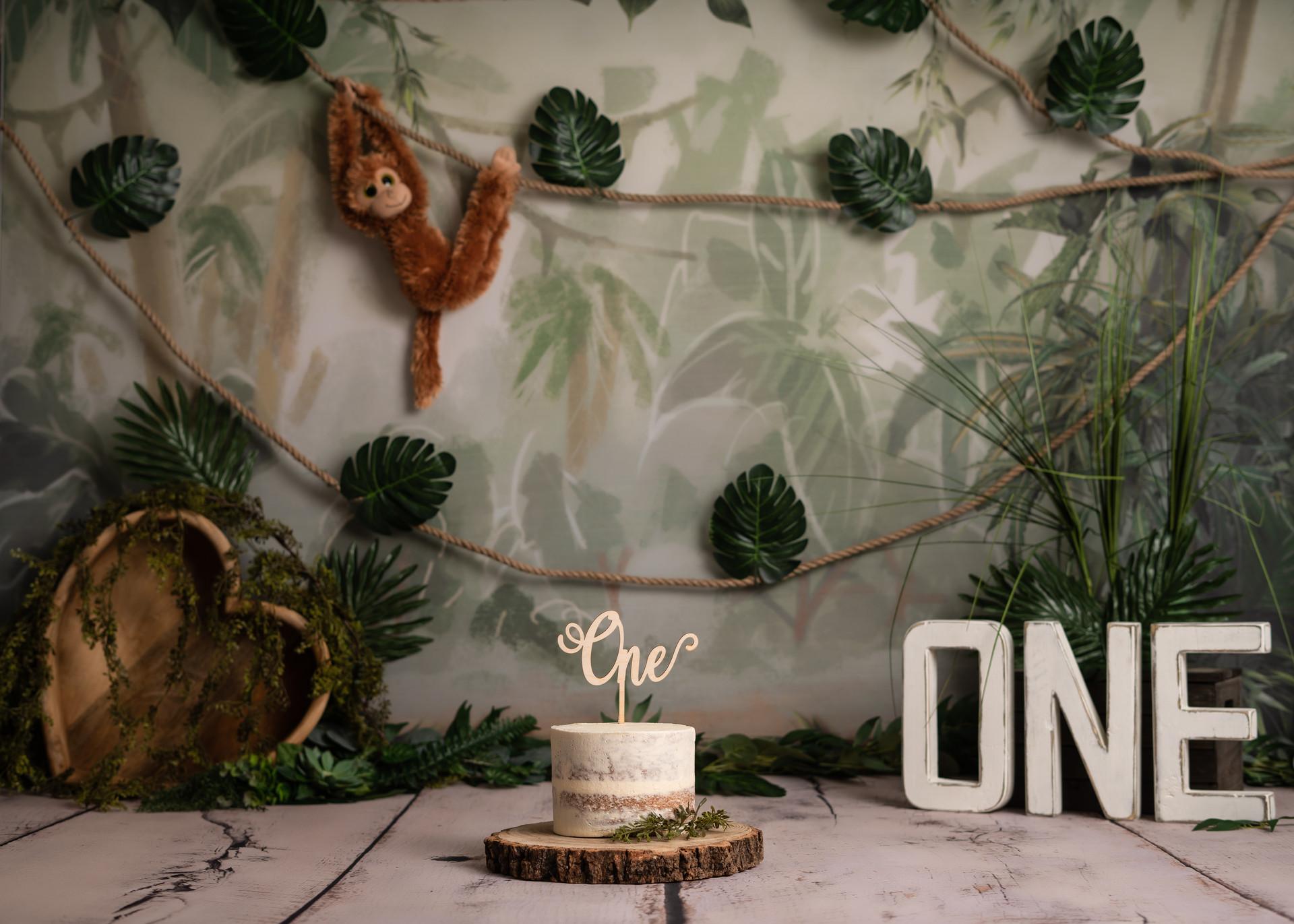 Jungle Themed Cake Smash - Essex, London