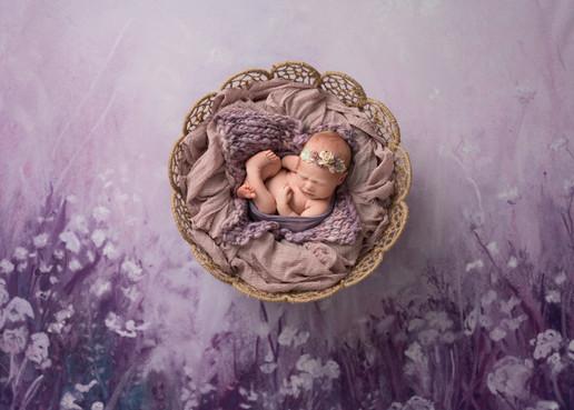 Beautiful Newborn Baby Photos