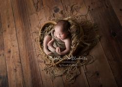 Prop Newborn Photography