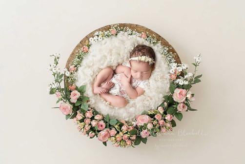 Newborn Baby Photos Essex