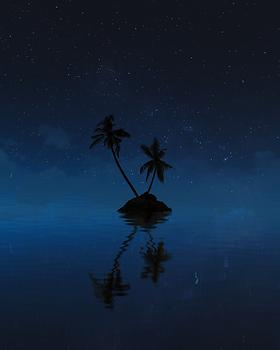 Island Palms.png