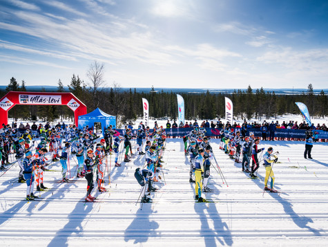 Bauer Ski Team at Ylläs-Levi: Katerina Smutna 6th, three more athletes up to 15th place