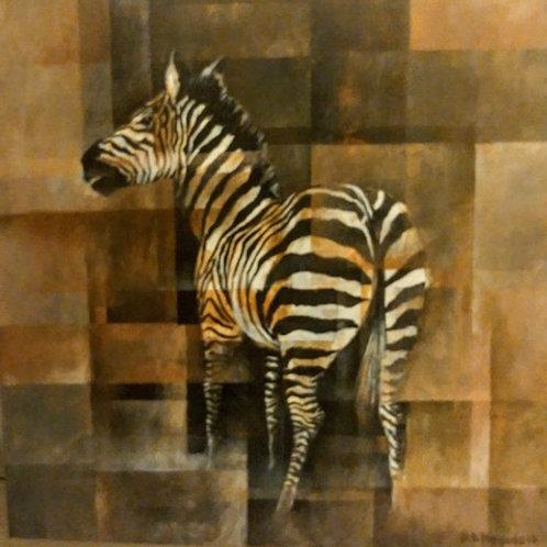 DM-04  Zebra