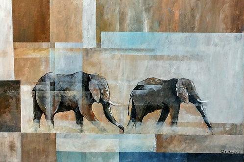 DM-08 Elephants