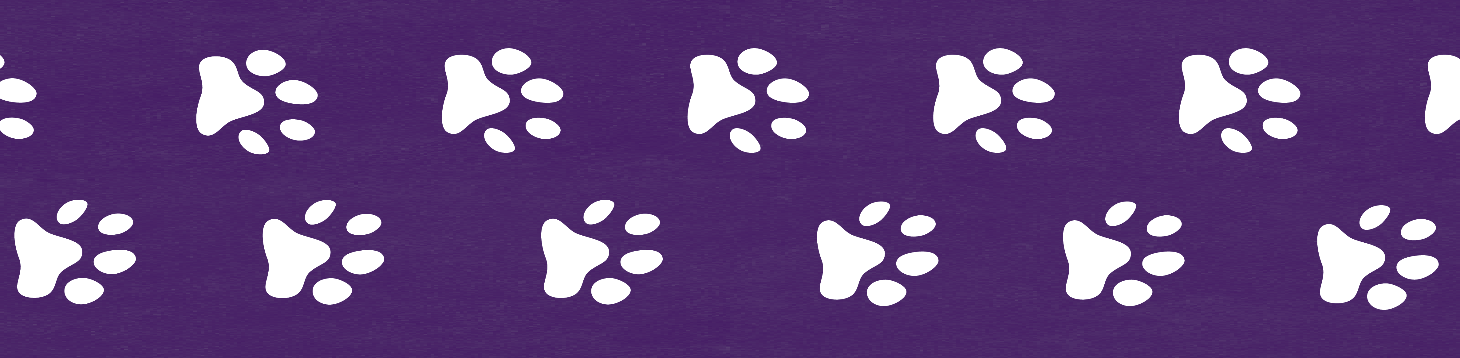 Featured Image - Paw Prints