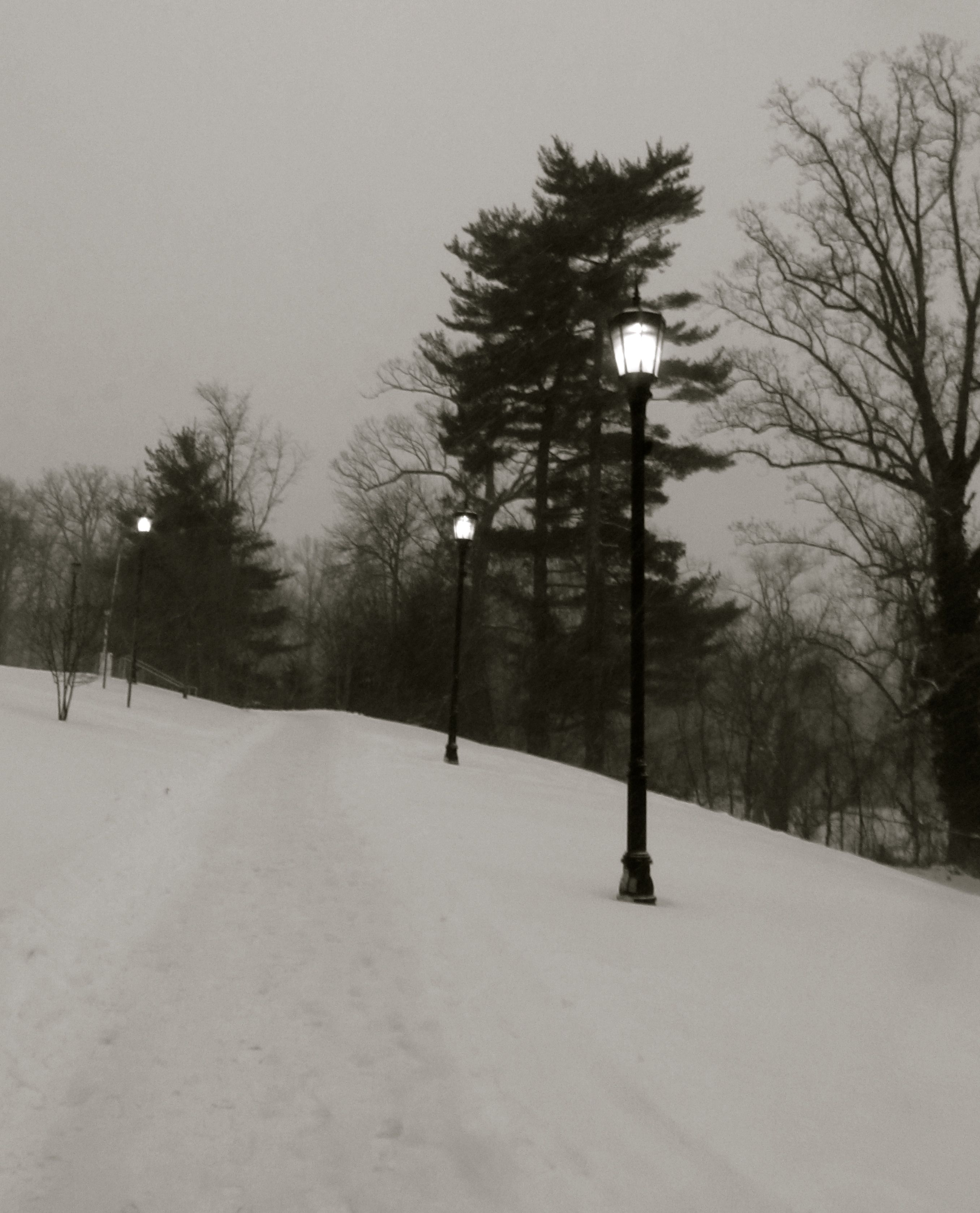 Winter at Loyola