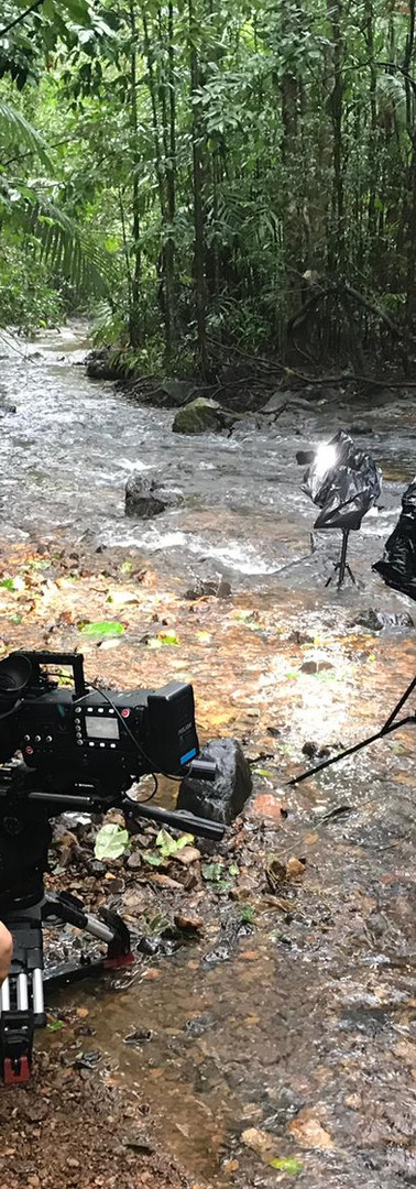 Foot flagging frogs with Phantom flex 4k, 2019