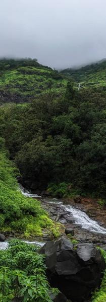 Wild Maharshtra