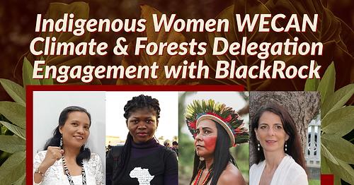 BlackRock Forest Delegation (1).png