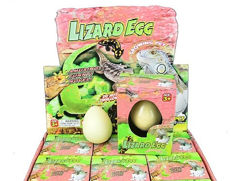 Growing Pet Lizard Egg