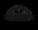 The Ark Logo 1 gunmetal.png