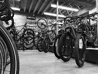 Bikes inside the Ark cycles store