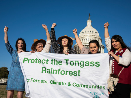 Timeline of The WECAN Tongass Women for Forests Campaign