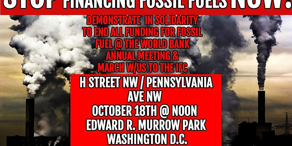 Stop Financing Fossil Fuels NOW!