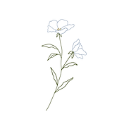 flower on white.png