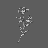 Flower on grey.png