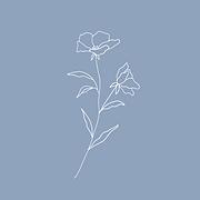 Flower on Blue.png
