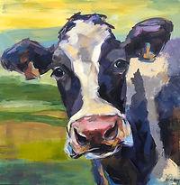 Lucky cow.jpeg