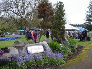 Spring Festival & Craft Fair: A Springtime Success