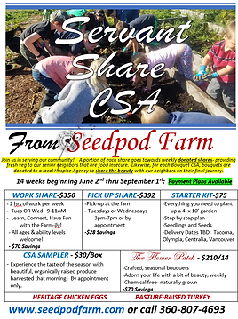 Seedpod Farm CSA 2020 Flyer.png