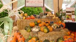 Harvest Festival & Craft Fair 2017