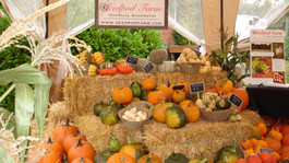 Harvest Festival & Craft Fair 2017
