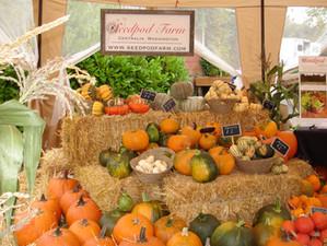Harvest Festival & Craft Fair 2016