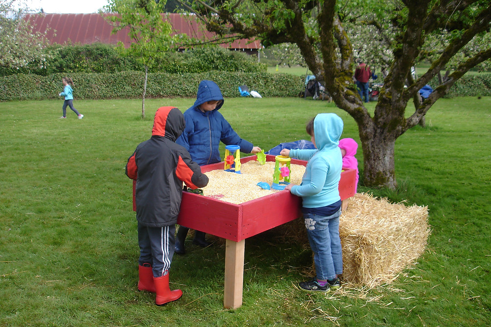 Seedpod Farm Spring Festival- Sensory Table