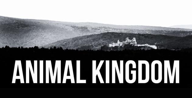 Animal Kingdom, web comics out of Philadelphia
