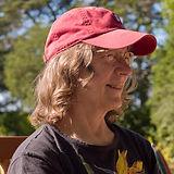 Wendy Image.jpg