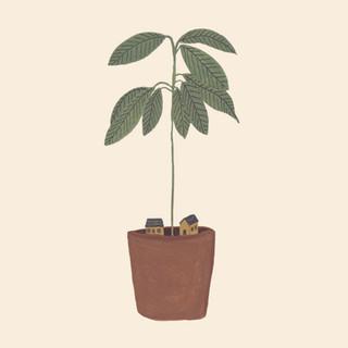 växtstugan2.jpg
